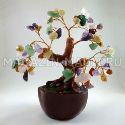 Bonsai Mix di pietre (18 cm)
